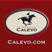 CALEVO