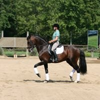 Cloverlea Dressage LLC