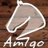 Amigo Klub Jeździecki
