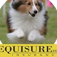 Equisure, Inc: Insurance For Your Dog-Related Risk