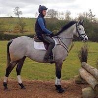 """Irish Sport Horse Agent """"Penhills"""""""