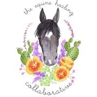 The Equine Healing Collaborative