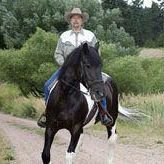 Duey Freeman, Equine Journey