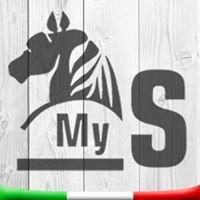 MY SELLERIA - NEGOZIO ON LINE DI ARTICOLI PER L'EQUITAZIONE