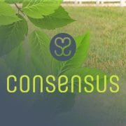Pferdereha Consensus