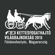 2015 Fabiansebestyen - World Pairs Driving Championships