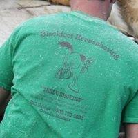 Blackfoot Horseshoeing