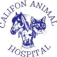 Califon Animal Hospital