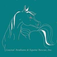 Coastal Arabians & Equine Rescue, Inc.