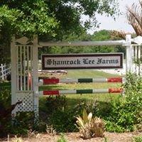 Shamrock Lee Farms