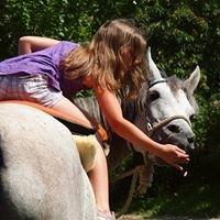 Mit Pferden sein-Sabine und Dan Birmann