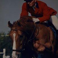 Klub Jeździecki Vital