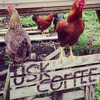USK Coffee