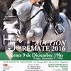 Henry Jota Horses