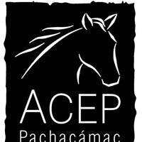 ACEP- Academia Ecuestre Peruana