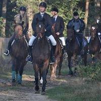 Zielonogórski Klub Jeździecki Przylep-Lotnisko