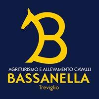 Bassanella Agriturismo e Allevamento cavalli