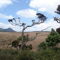 Horton Plains National Park - Sri Lanka