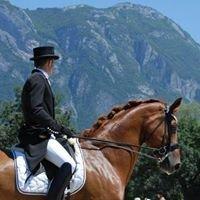 """Centre Equestre de Champlong """"Stal Dressage"""""""