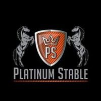 Platinum Stable