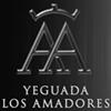 Yeguada Los Amadores