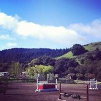 Edgewood Equestrian Enterprises