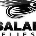 Salar Flies