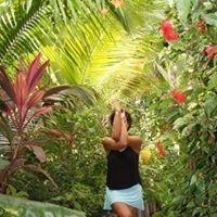Zen Belize