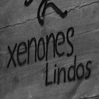 Xenones Lindos