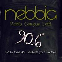 Nebbia Radio Campus Corte