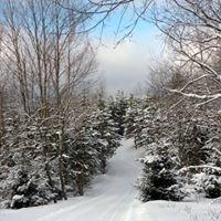 Forbush Corner Cross-Country Skiing
