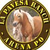 Agriturismo La Pavesa