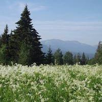 Эко-парк Зюраткуль