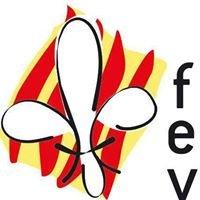 Federació d'Escoltisme Valencià