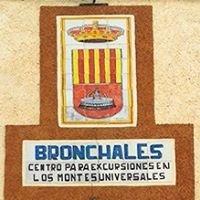 Turismo Bronchales / Sierra de Albarracín / Teruel