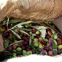 ΕλαιοΖωή: Ελαιοτριβείο - Εμπόριο Προϊόντων Ελιάς