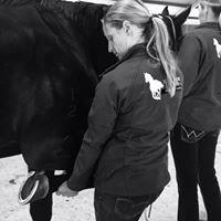 Dartbrook Equine Veterinary Clinic
