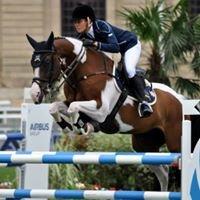 Copabella Sporthorses