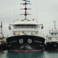 Balıkçı Teknelerii