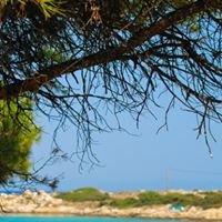 Karidi Beach Vourvourou Chalkidiki