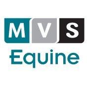 Matamata Veterinary Services - Equine