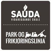 Park og Frikjøringslinja, Sauda VGS