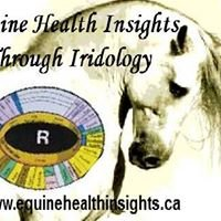 Equine Health Insights
