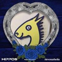 HEPSIS Team