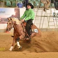 SF Quarter-Horses