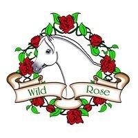 Wild Rose Welsh & Open Pony Show
