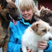 Lemmikkieläinhoitola Tuulan karvakorvat ja Pieksämäen löytöeläinkoti