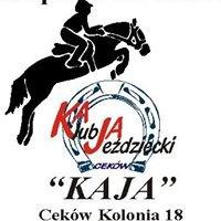"""Stowarzyszenie Klub Jeździecki """"Kaja"""" / Ośrodek Sportowo-Rekreacyjny"""