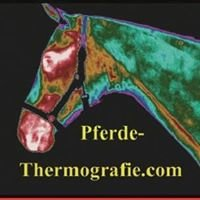 Pferde-Thermografie.com