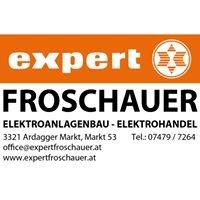 Expert Froschauer
